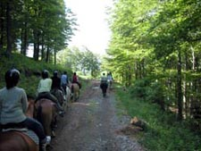 Balade Equestre Sancy